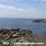 千葉で磯遊びしてきました!子供も楽しめる岩場のある穴場の海!