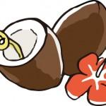 ココナッツミルクの効果で美肌に!副作用の危険は大丈夫?